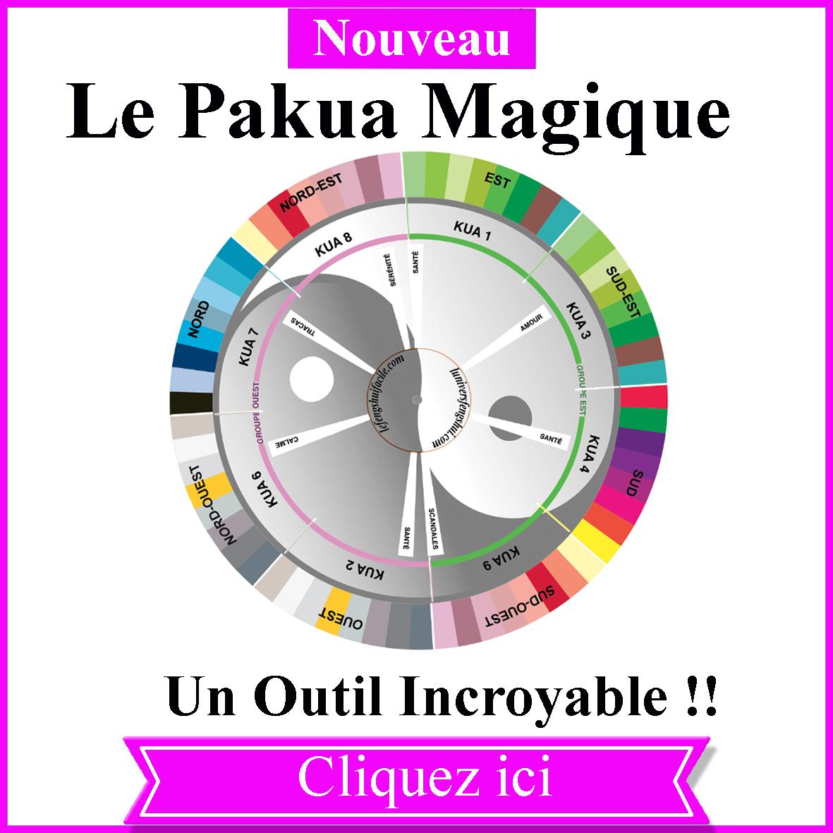 WIDGET-PAKUA-MAGIQUE-